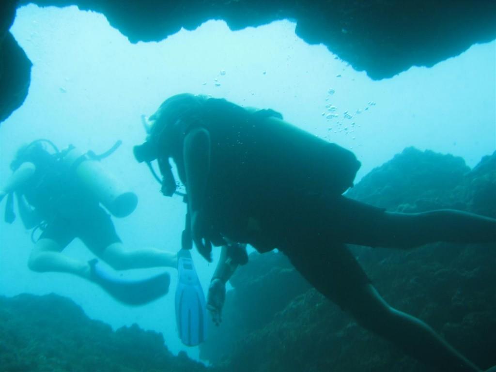 Dive (40) (Large).JPG