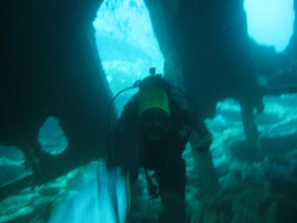 Dive (71) (Large).JPG