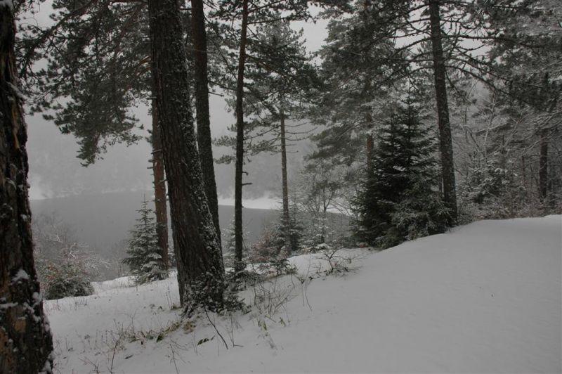 sülüklü göl resimleri 031 (Large).jpg