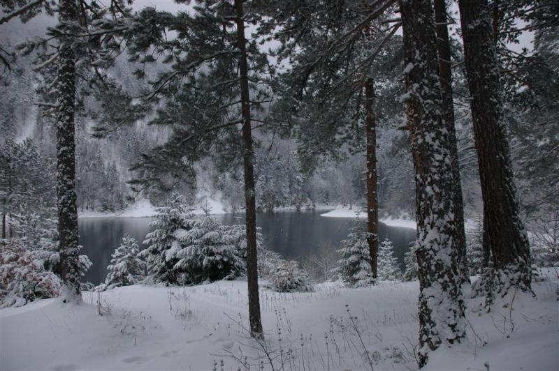 sülüklü göl resimleri 124 (Large).jpg