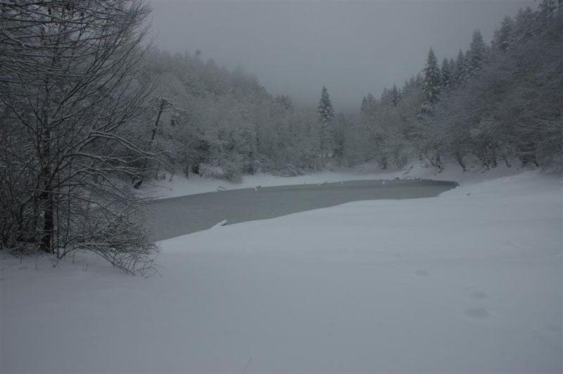 sülüklü göl resimleri 190 (Large).jpg