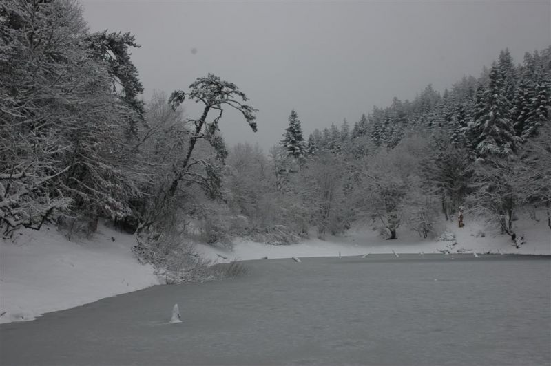 sülüklü göl resimleri 202 (Large).jpg