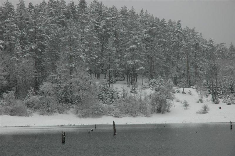 sülüklü göl resimleri 322 (Large).jpg